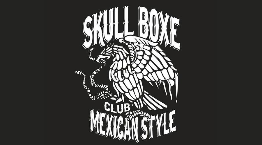 palestra-skullboxe-ccs-asti-02